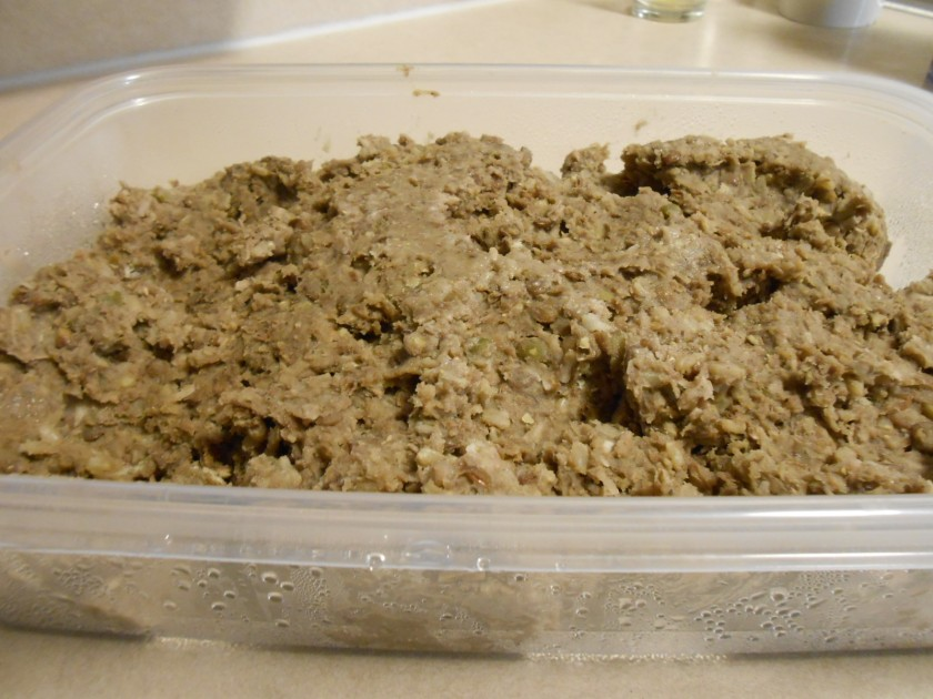 COCONUT LENTIL ANIMAL-FREE BURGER BATTER IN PLASTIC CONTAINER