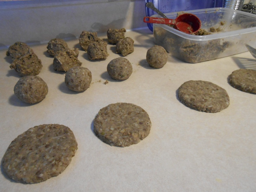 COCONUT LENTIL ANIMAL-FREE BURGER SCOOPS BALLS PATTIES RAW